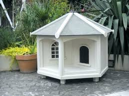 how to build a cat house heated outdoor large plans houses co dogs cats r designs