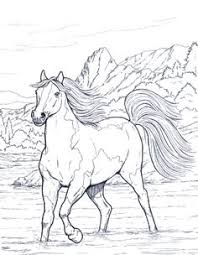 Small Picture Realistic Horse Coloring Pages Coloring Pages