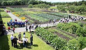 The Victorian Kitchen Garden Kitchen Garden Lissadell House Online