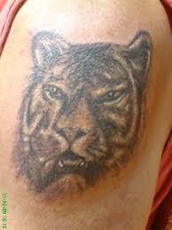 Tetování Fauna Studio Rosemary