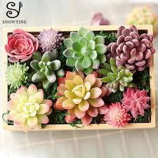 2019 mini artificial succulent plant diy micro landscape material looks real plastic fake plants flower for hotel home garden decor c19041302 from