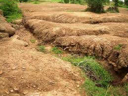 soil erosion in types and causes essay types of soil erosion