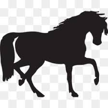 draft horse head silhouette. Brilliant Draft Draft Horse PNG U0026 Transparent Clipart Free Download  Arabian Horse  Silhouette Clip Art Royal Cliparts And Head S
