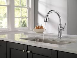 Best On Kitchen Faucets Bathroom Elegant Design Of Delta Cassidy Faucet For Pretty