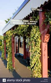 Hops For Decoration England East Sussex Bodiam Station On The Kent East Sussex
