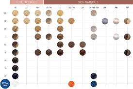 Well Hair Color Chart Color Touch Demi Permanent Color Wella Professionals