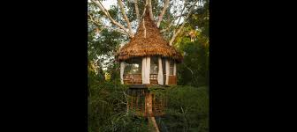 treehouse. Treehouse Two \u2013 Laguna Vista A