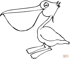 Small Picture Pelican 17 coloring page Free Printable Coloring Pages