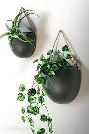 hanging plants ceramic wall planters