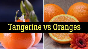 tangerine vs oranges health benefits nutrition facts