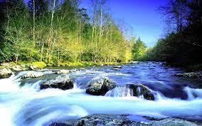 Beautiful River Widescreen wallpaper ...