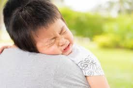 Critical Period In Brain Development Parenting For Brain