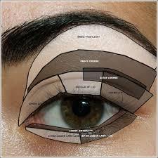 Where To Apply Eyeshadow Eye Makeup Diagram Maquiagem