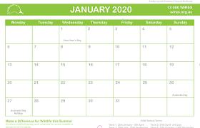Australian Wildlife Calendar 2019 For Sale Wires Wildlife