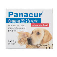 Panacur Worming Granules For Cats Buy Panacur Granules For