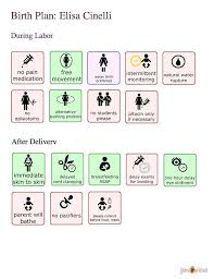 Visual Birth Plan Icons Birthing Plan Template Beautiful Non Medical Home Care Business Of