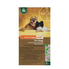 imidacloprid for dogs. Brilliant Dogs Advantage Multi Advocate For Dogs To Imidacloprid For