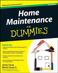 Amazing Home Maintenance For Dummies, 2nd Edition: Amazon.co.uk: James Carey:  8601400007402: Books