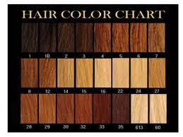 Redken Hair Color Chart Redken Hair Color Chart Shades Www Haircolorer X My Blog