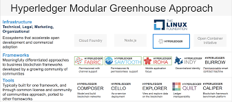Image result for HYperledger modular approach graphic newest