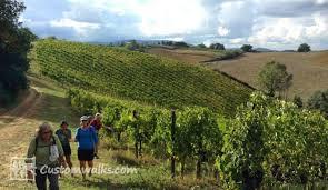 tuscany wine walking tour walking