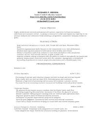 Collections Resume Collections Representative Resume Template