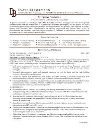 Executive Summary Example Resume Outathyme Com
