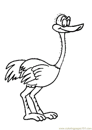 Small Picture Ostrich1 Coloring Page Free Ostrich Coloring Pages