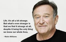 Robin Williams Quote Extraordinary Lovely Best Robin Williams Quotes Quotes About Robin Williams 48