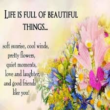 Beautiful Things Quotes Best of Life Is Full Of Beautiful Things Pictures Photos And Images For