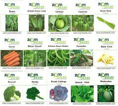 easy gardening set of 15 vegetable seeds for terrace kitchen garden f1 hybrid seeds kit in garden outdoors