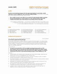 Template Resume Sample Of Marketing Manager Best Template Free For