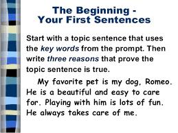 five paragraph essay 8