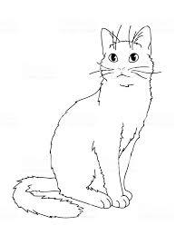 かわいいリアルな猫が座っています見上げるキティのベクター イラスト