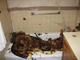 How Decorate Bathroom