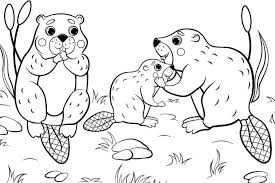 For kids & adults you can print animal or color online. Animal Families Coloring Pages Free Fun Printable Coloring Pages Of Animal Families For Everyone Printables 30seconds Mom