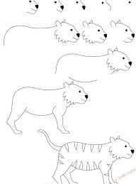 Disegni Leggeri Di Tigri Come Disegnare Una Tigre Proporzioni