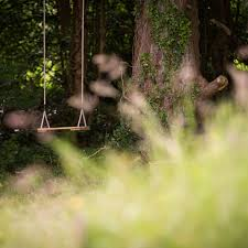 Tree Swing Tree Swings For The Garden Creating Fun Play Spaces For Children