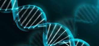 Antisense and RNAi Therapeutics Market Size Hit US$ 1.9 Bn by 2026