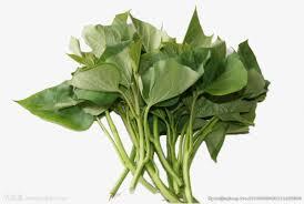 Green Leafy Vegetables Vegetables Clipart Green Leaves Vegetables