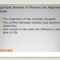 theme for flowers for algernon flowers ideas for review  6 themes important themes in flowers for algernon