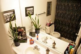Apartment Bathroom Decorating Ideas Unique Design