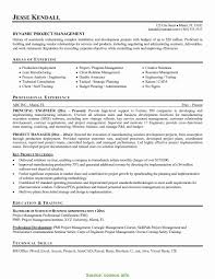 Project Manager Resumes Examples