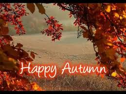 Autumn Quotes Adorable Autumn Quotes Beautiful Fall Quotes Best Sayings About Autumn