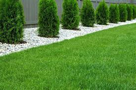 8 reasons why artificial grass is the absolute best direct best artificial grass artificial grass costco