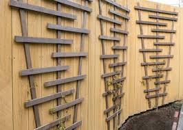 garden trellis on fence