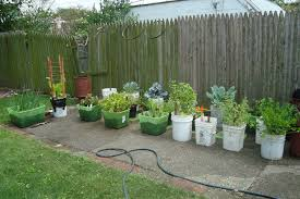 Container Garden Design Gallery