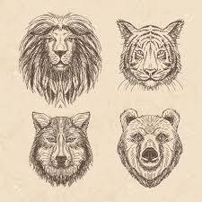 Logo Lion Dessin L L L L L L L L L