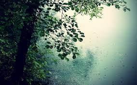 Rain Wallpaper, Image, Background ...