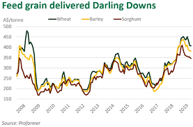 No Relief From Grain Pain Meat Livestock Australia